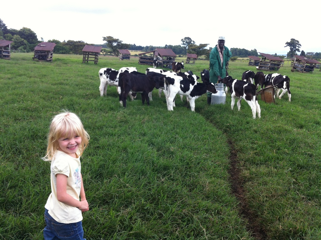Look, Daddy, baby cows!  Riley, this weekend at the Nightingale Farm north of Nakuru.