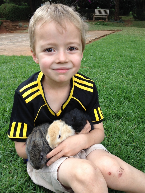 A third culture kid with three bunnies, recently acquired from friends with unexpectedly fertile rabbits