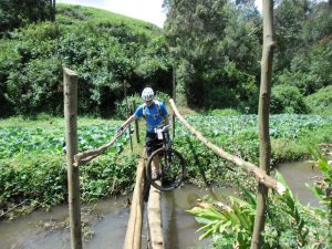 Stream crossing in the tea fields of Limuru